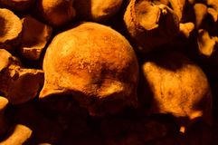 sketelons in catacombs of paris Royalty Free Stock Photo