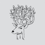 Skethcy van hertenhoofd Stock Afbeeldingen