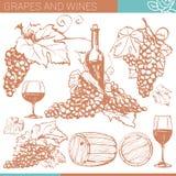 Skethes вектора винодельни иллюстрация штока