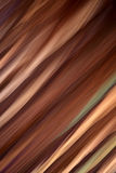Skew abstract blurred brown carpet Royalty Free Stock Photography