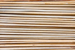 Skewer from Bamboo Royalty Free Stock Photography