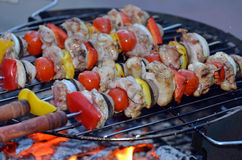 Skewer with meat and vegetables Stock Photos
