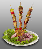 Skewer with meat and vegetables. And garnish with onion and lettuce stock images
