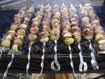 Skewer on the nature Stock Images