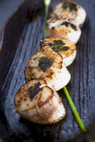 Skewer Seared do Scallop imagem de stock royalty free
