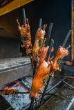 Skewered roasted guinea pigs at market stock photos