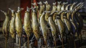 Skewered solił ryba Zdjęcia Royalty Free