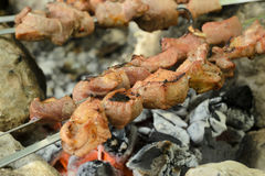Skewers deliciosos da carne de porco Foto de Stock