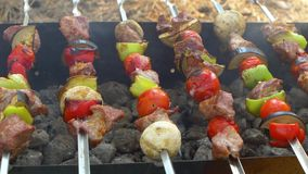 Skewers with delicious kebabs or barbeque on stock footage