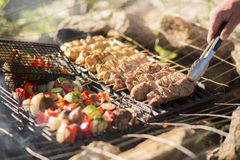 Skewers grelhados Foto de Stock Royalty Free