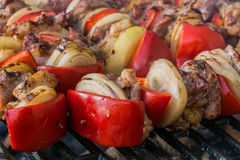 Skewers on the gril. L with paprika and onions Stock Images