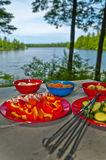 Skewers ingredients by the lake Stock Photo