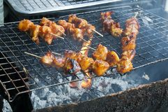 Skewers of meat cooking on charcoal grill royalty free stock images