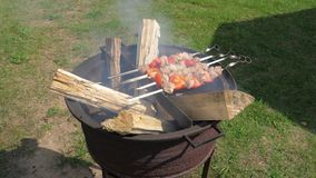Skewers Of Meat And Vegetables On Skewers Cooked On The Grill. stock footage