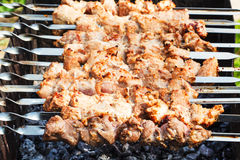 Skewers with pork shish kebabs on roaster Stock Photography