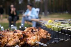 Skewers with roasted chiken meat on the hot grill closeup royalty free stock image