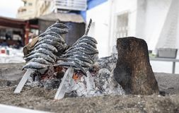 Skewers of sardines pricked over grilled earth on the Spanish coast stock photo