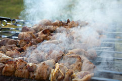 Skewers z mięsem na grilla grillu Obraz Royalty Free