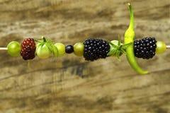 Skewers z naturalną owoc w zamazanym tła drewnie Zdjęcia Stock