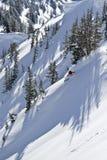 Skiër in de bomen. Royalty-vrije Stock Afbeeldingen