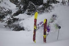 Skiër in diepe pow Stock Fotografie