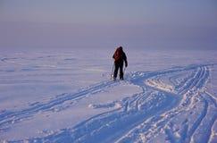 Skiër in het hele land in diepe sporen Royalty-vrije Stock Foto's