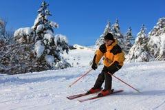 Skiër op een helling stock afbeeldingen