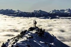 Skiër op een piek Stock Afbeeldingen