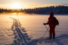 Skiër in wildernis Stock Afbeelding