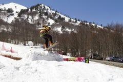 Skiërs die van de sneeuw genieten Stock Afbeelding