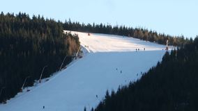 Skiërs op helling tussen bomen stock videobeelden