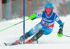 Ski Stock Images