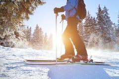 Ski photo stock