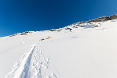 Ski alpinists in winter scene Royalty Free Stock Images