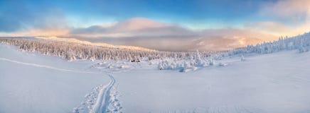 Ski in bergen in werking die wordt gesteld die stock afbeelding