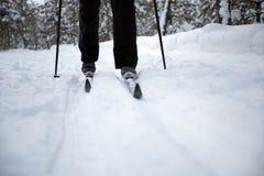 Ski d'homme dans les bois Photographie stock libre de droits