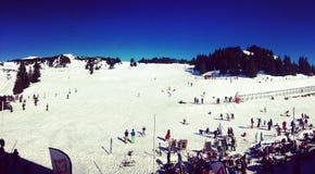Ski dans le bleu Photos libres de droits