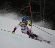 Ski de Benni Raich Autriche Photographie stock libre de droits