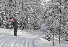 Ski de fille Photographie stock
