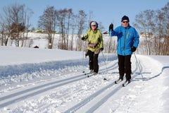Ski de fond photographie stock