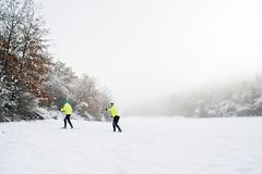 Ski de fond de couples supérieurs Photos stock