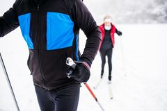 Ski de fond de couples supérieurs Images libres de droits