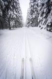 Ski de fond dans une forêt neigeuse Image libre de droits