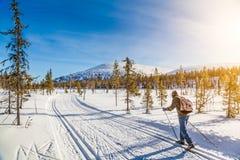 Ski de fond de touristes en Scandinavie au coucher du soleil image stock