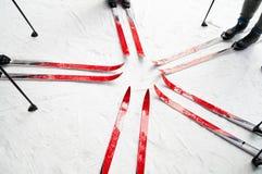 ski de forêt Photographie stock libre de droits