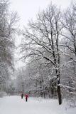 Ski de in het hele land van het paar Royalty-vrije Stock Afbeeldingen