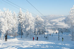 Ski de montagne Photo libre de droits