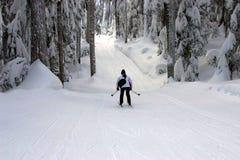 Ski de pays Photos stock