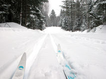 Ski de pays en travers Photo libre de droits