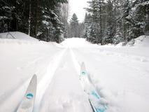 Ski de pays en travers photo libre de droits